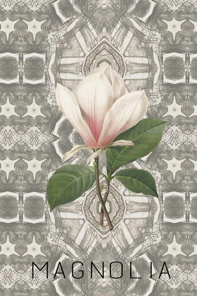 Magnolia II Waltz, Anne 166133