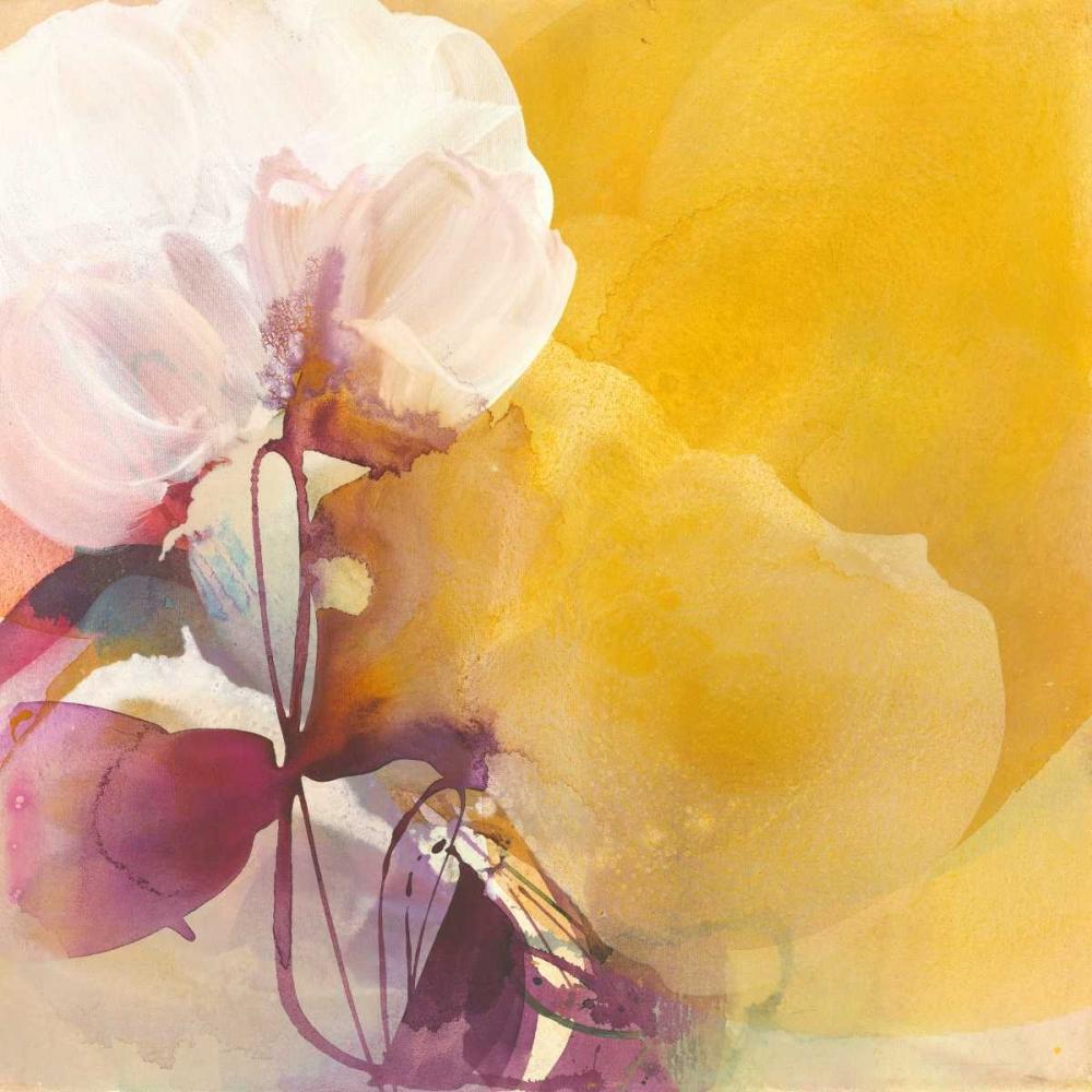 White Blossom Witt, El 27798