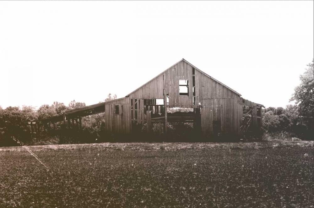 Barn I Berninger, Amber 140713