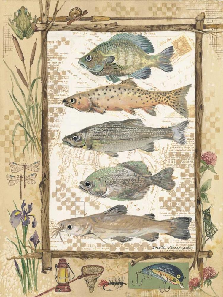 Fish Sampler Phillips, Anita 44337