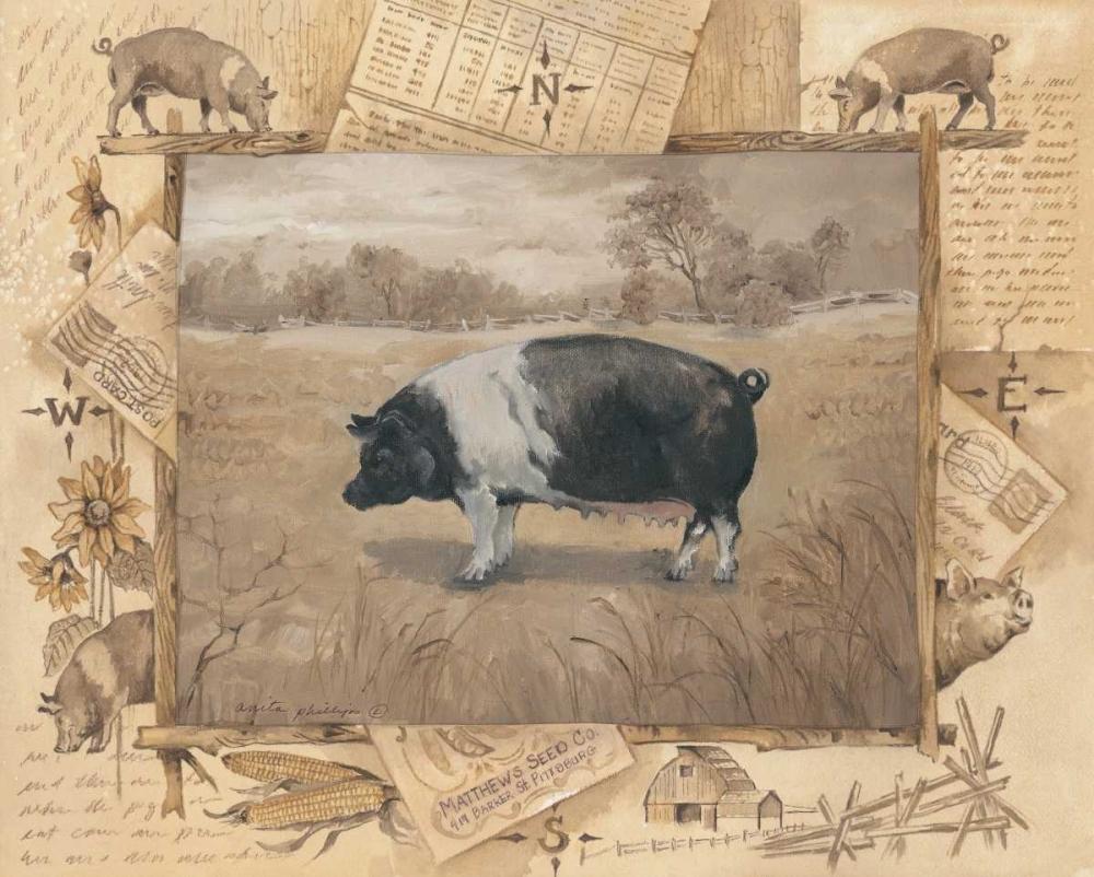Pig Phillips, Anita 44342