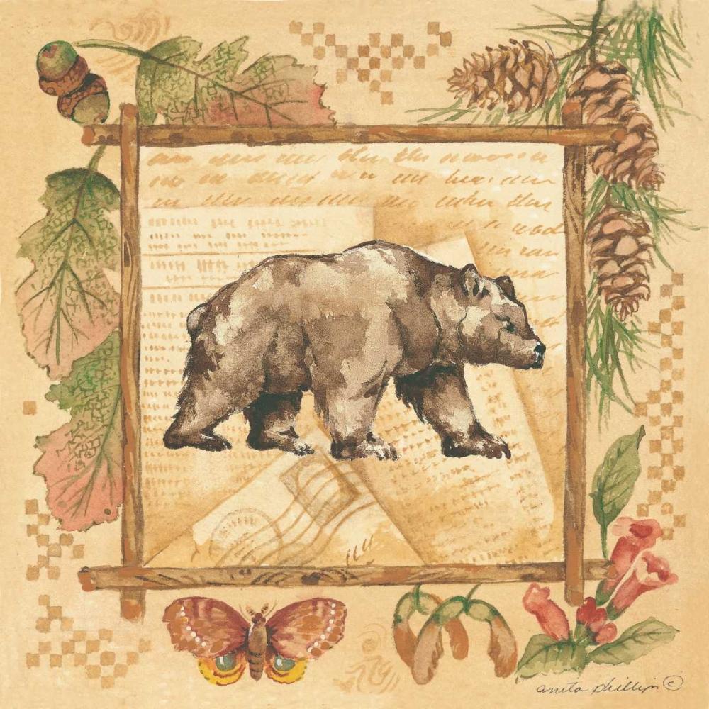 Bear Phillips, Anita 44361