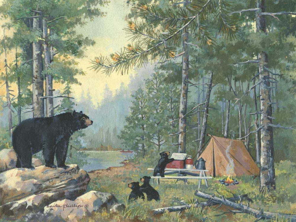 Bears Campsite Phillips, Anita 44424