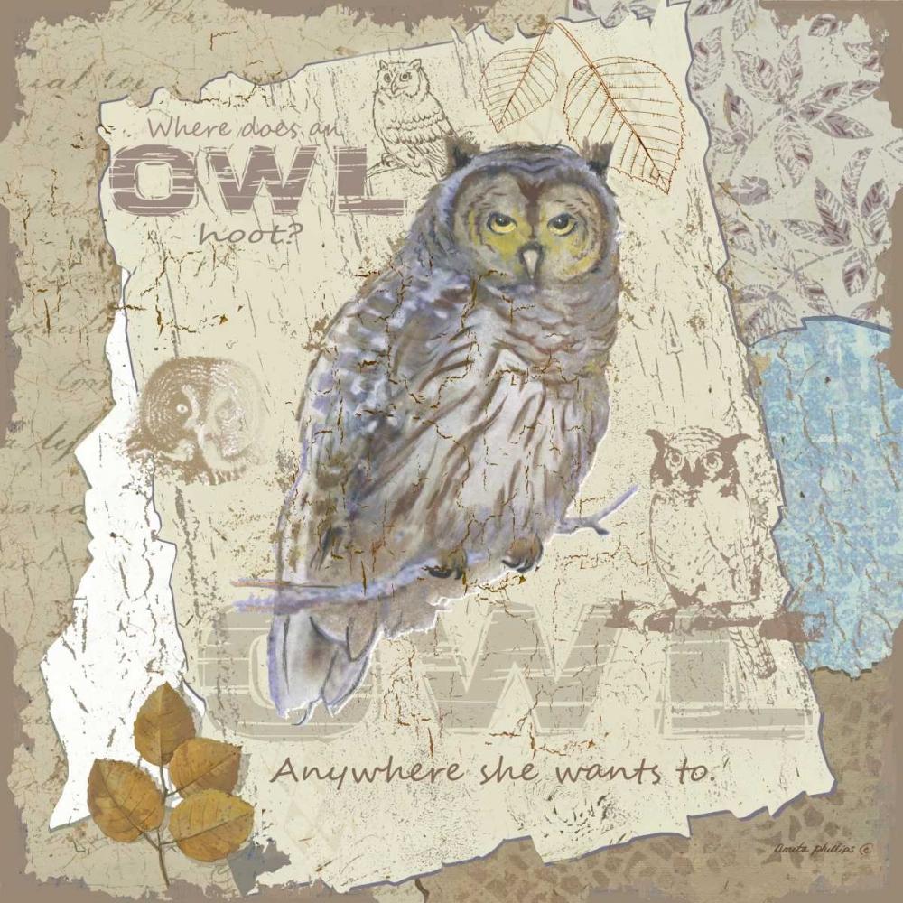 Owl Hoot Phillips, Anita 48233