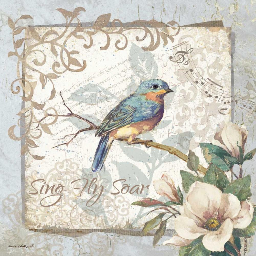Sing Fly Soar - Border Phillips, Anita 62009
