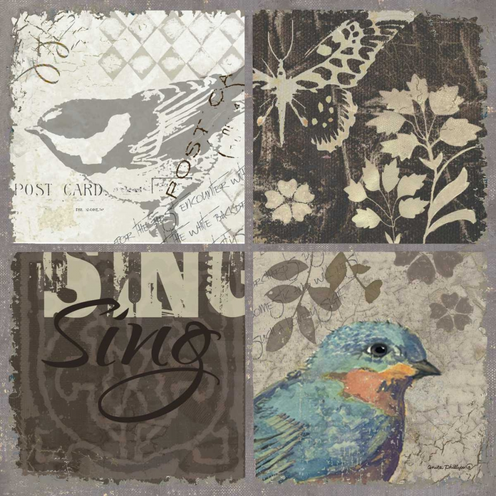 Bird 4 Patch I Phillips, Anita 62018