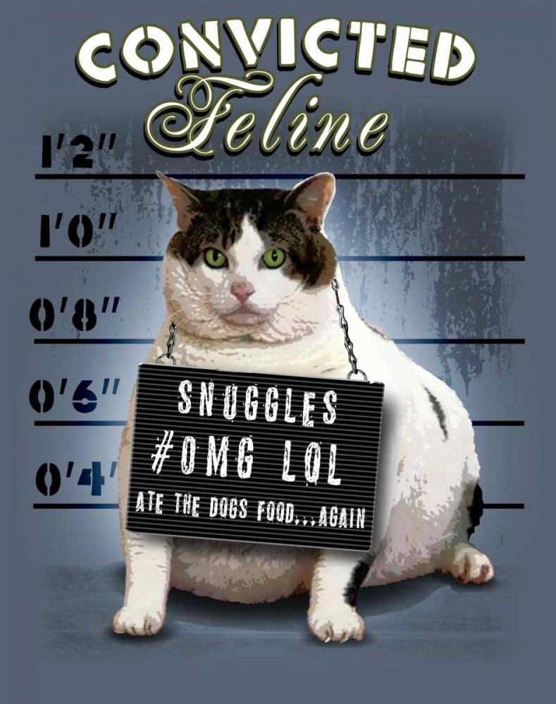 Convicted Feline Baldwin, Jim 41280