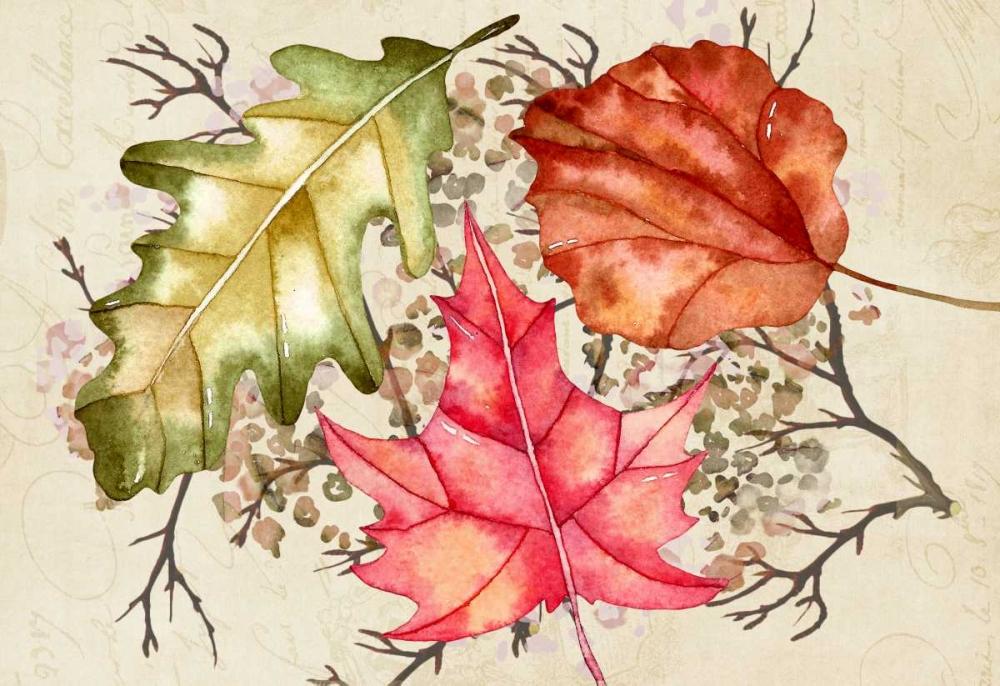 Watercolor Leaves Cummings, Amy 149269