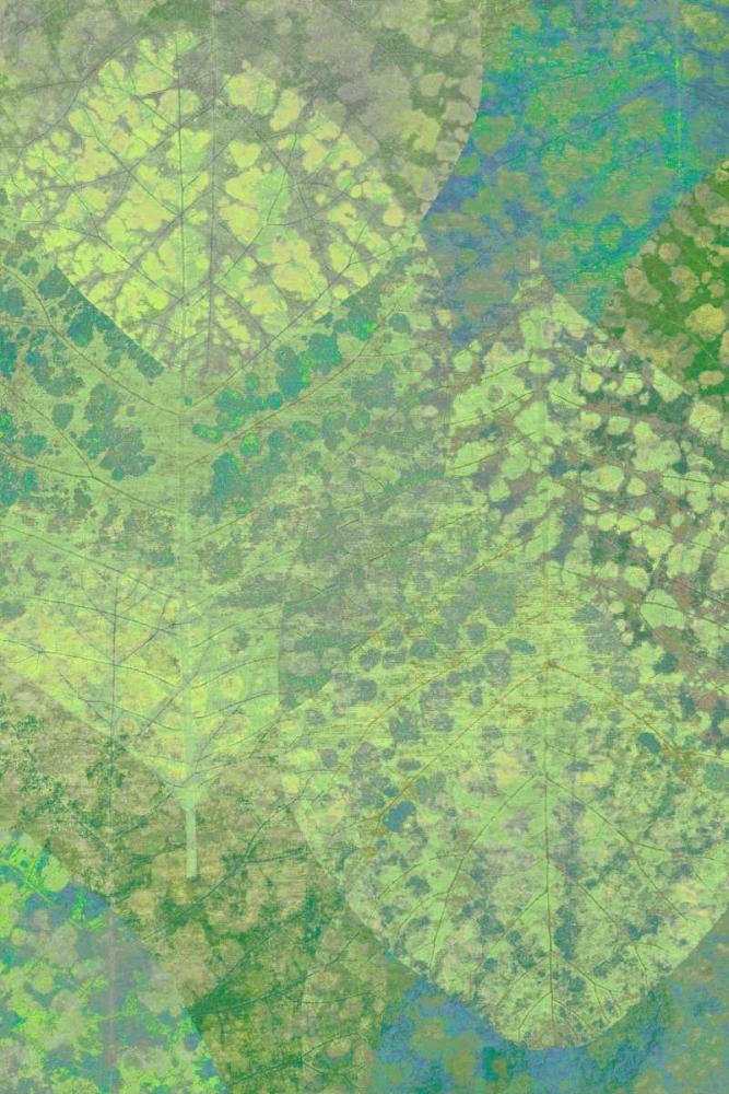Leaf Pattern 1-18 Niele, Cora 87575