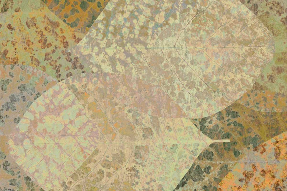Leaf Pattern 1-15 Niele, Cora 87580