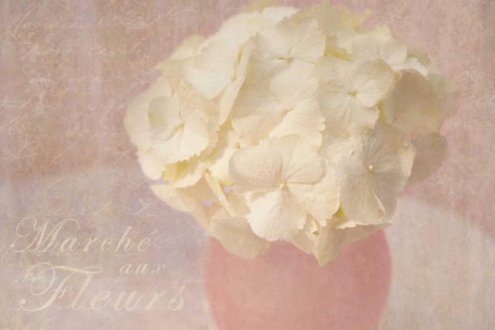 Marche Fleurs Niele, Cora 87664