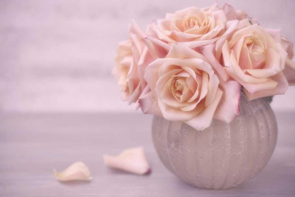 Rose Bouquet II Niele, Cora 97404