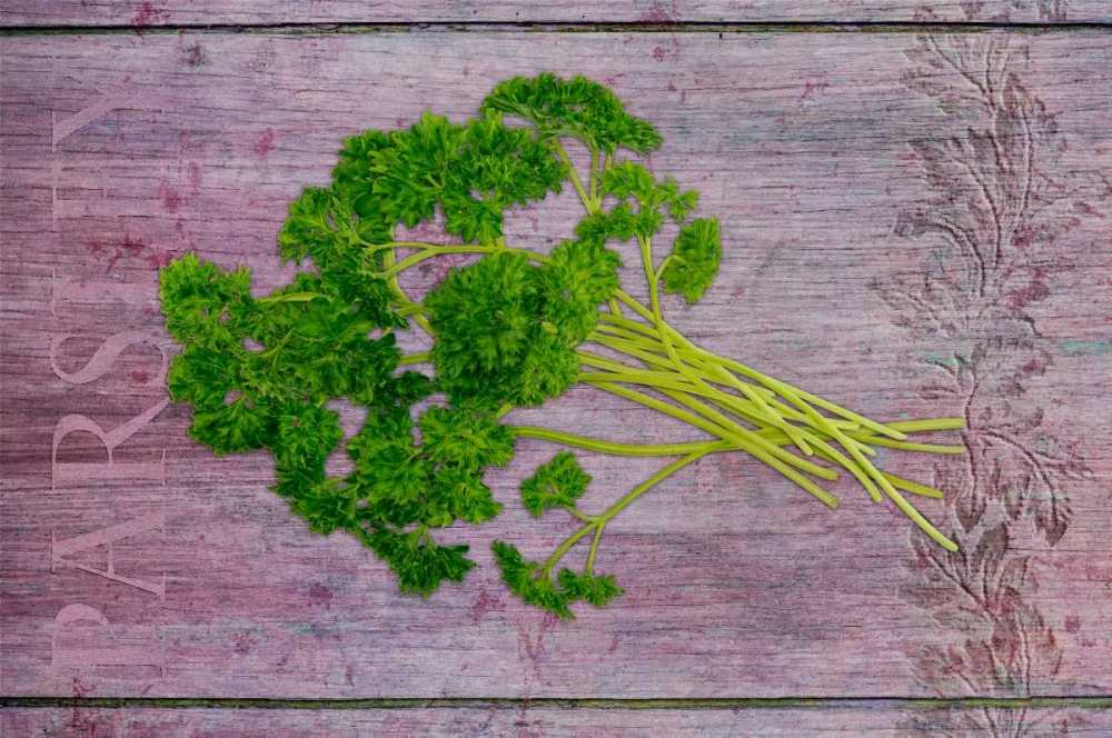 Parsley Garden Herbs Niele, Cora 104758