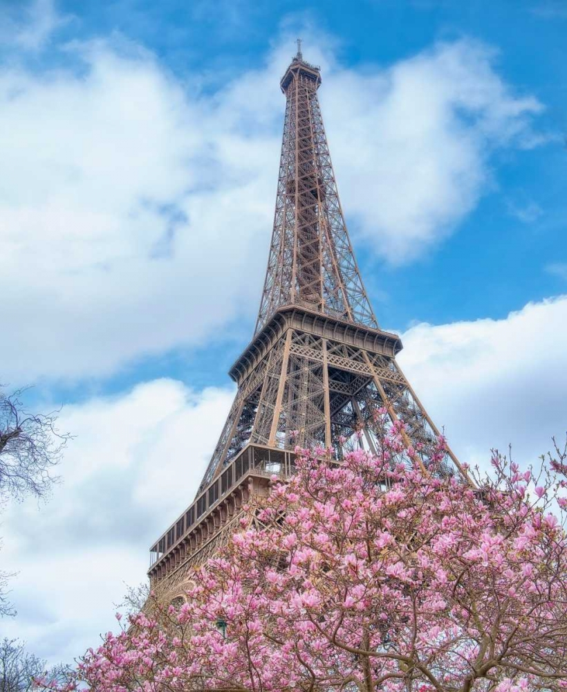 Eiffel Tower Spring Niele, Cora 140922