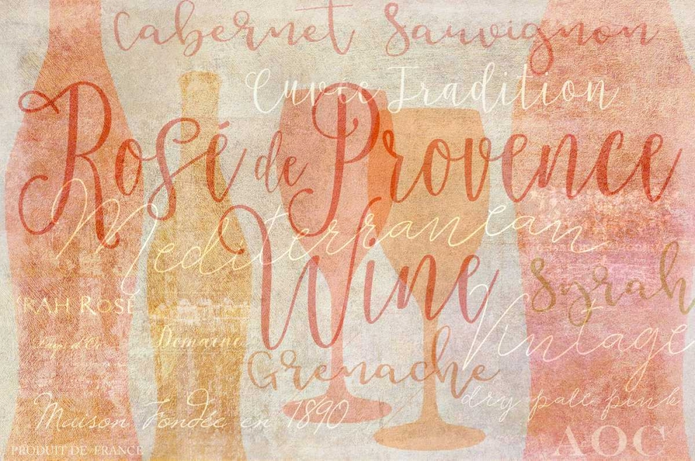Rose Provence Niele, Cora 156403