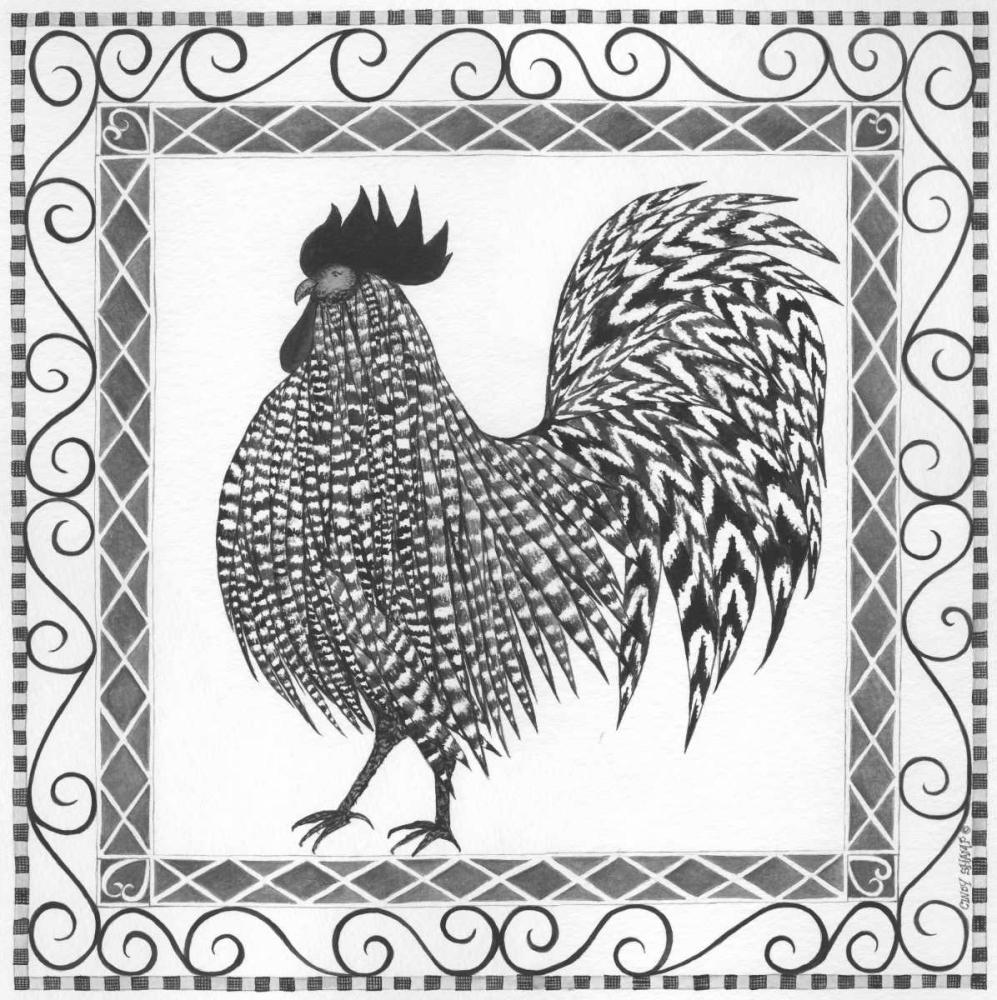 BandW Rooster II Shamp, Cindy 87728