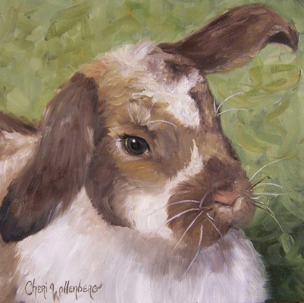 Pam the Bunny Wollenberg, Cheri 55885