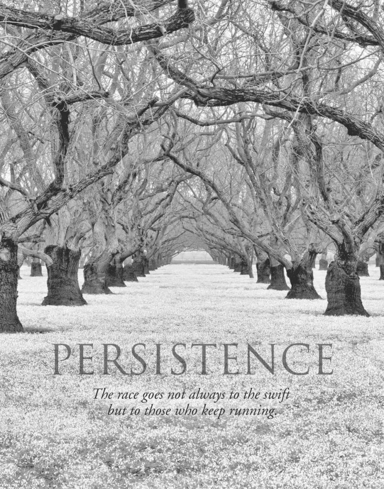 Persistence Frates, Dennis 41587