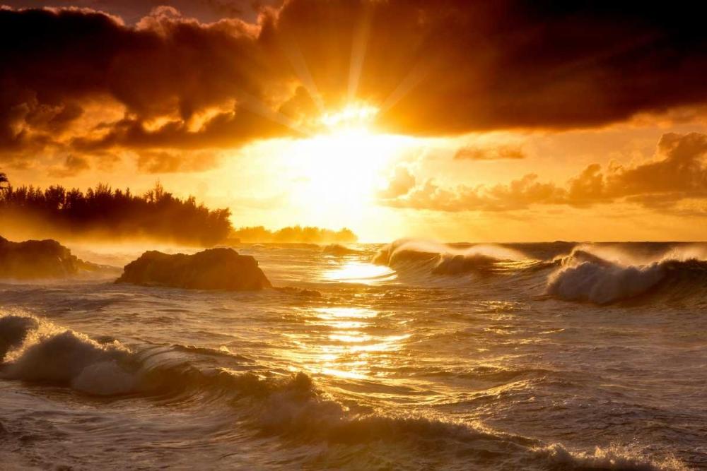 Sunset Frates, Dennis 41594