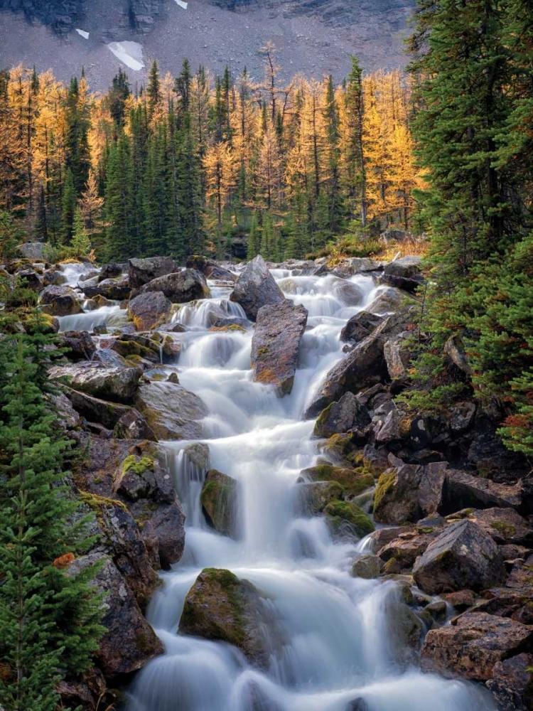 Autumn Falls II Frates, Dennis 62112