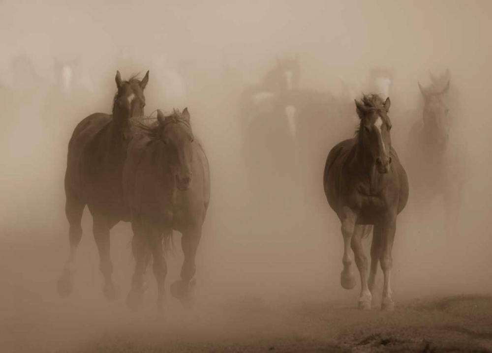 Ghost Horses Crandall, Gary 41678