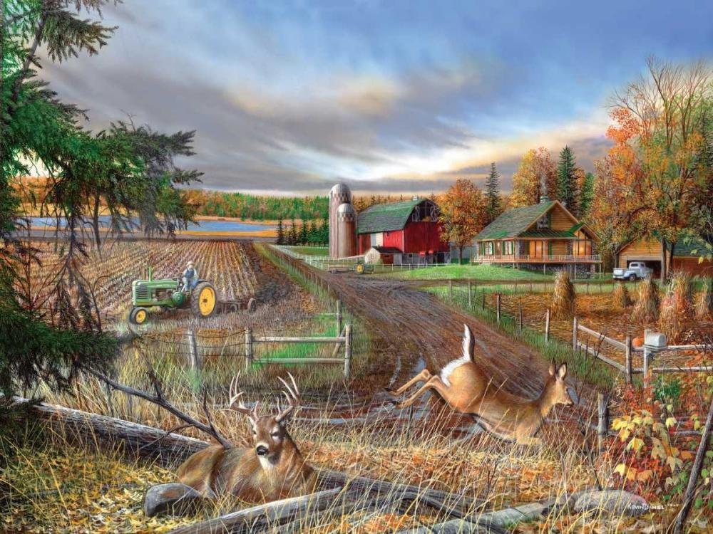 Dream Farm Daniel, Kevin 60223