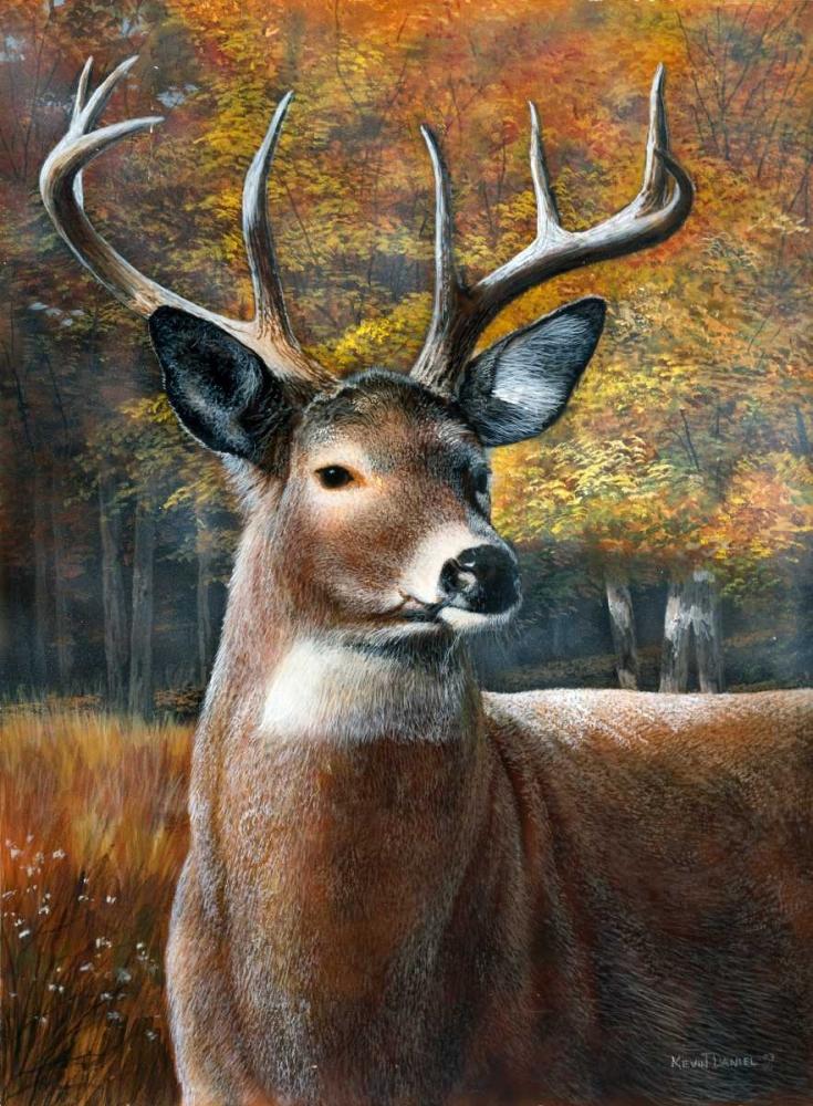 Deer Head II Daniel, Kevin 45542