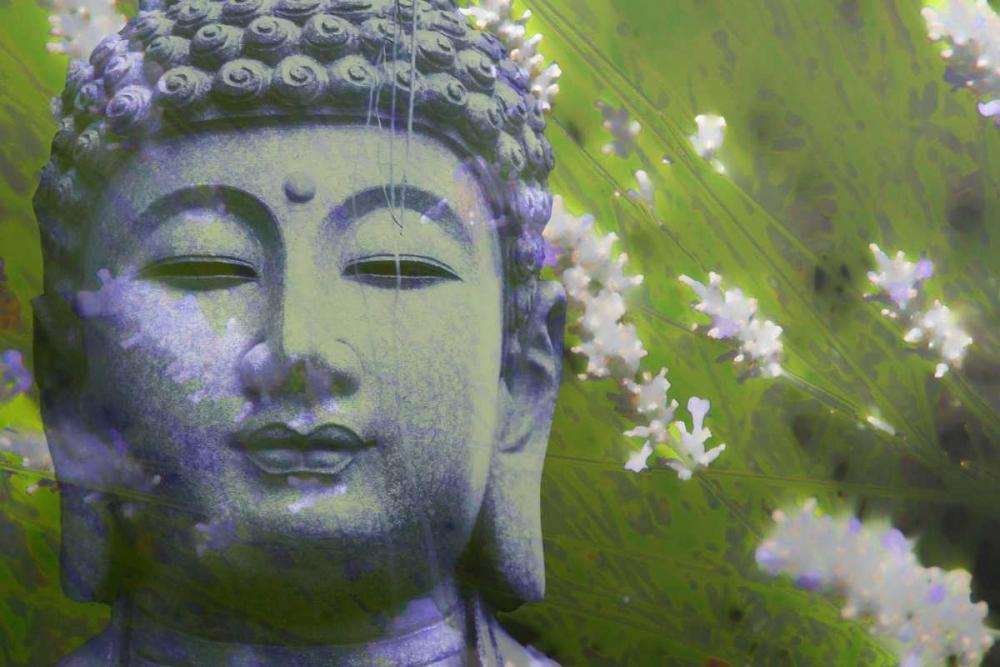 Lavender Buddha II Brooks, Kari 72859