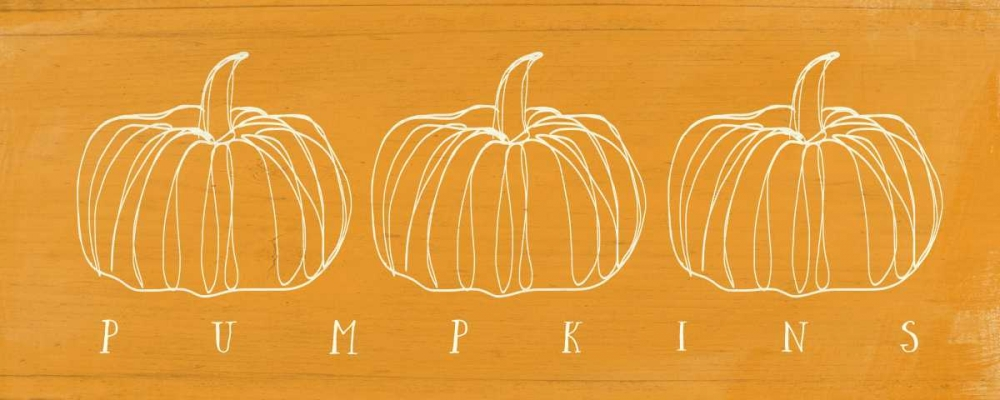 Pumpkins Woods, Linda 77737