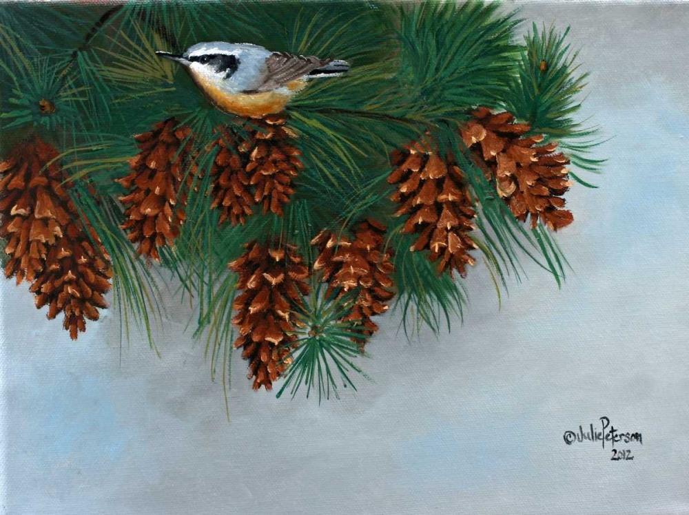 Pine Cones Nuthatcher Peterson, Julie 49244