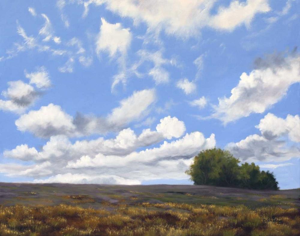 Big Sky Peterson, Julie 81128