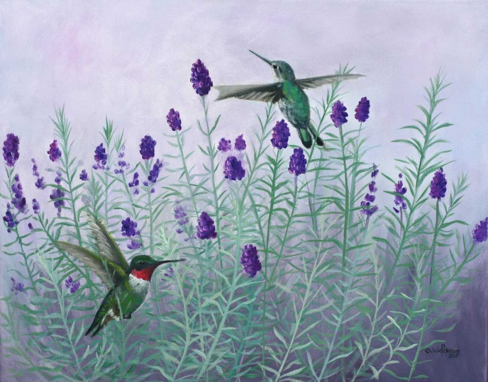 Humming Lavender Peterson, Julie 153839