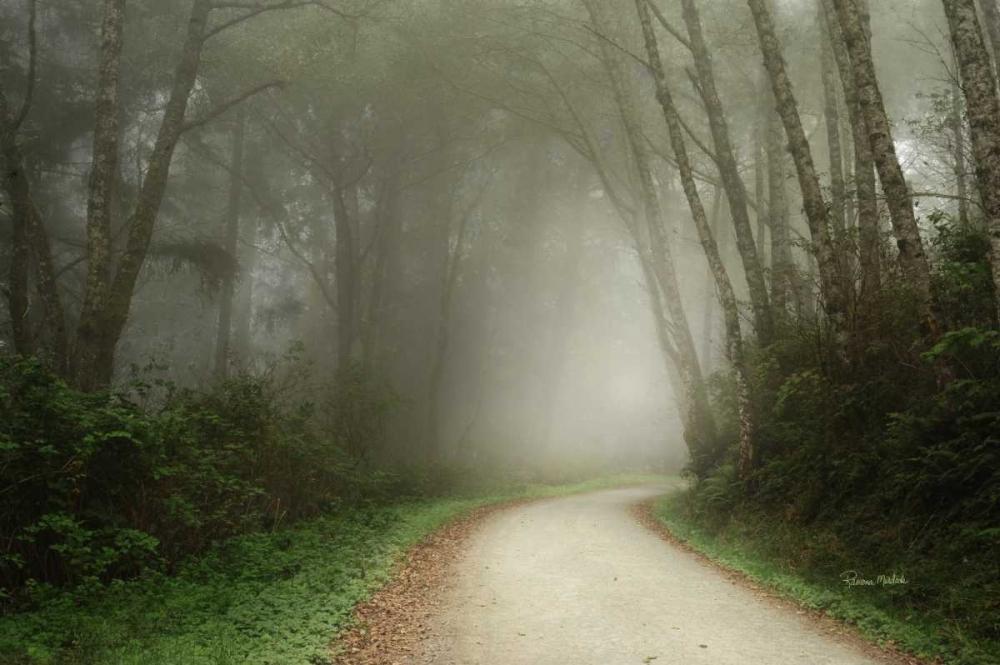Follow the Light Murdock, Ramona 97335