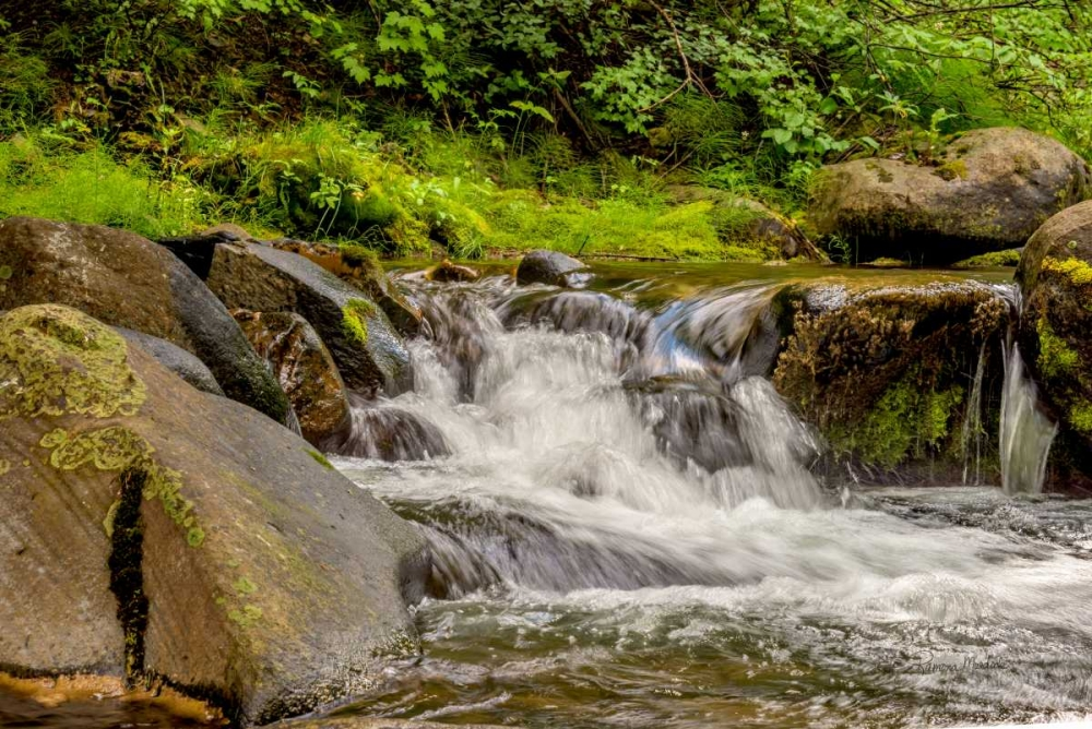 Mountain Stream Murdock, Ramona 105060