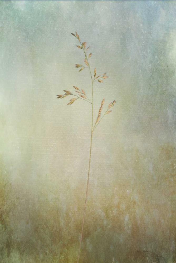 Marsh Grass Murdock, Ramona 120066