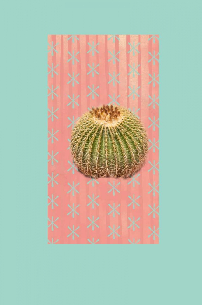 Barrel Cactus Murdock, Ramona 141587