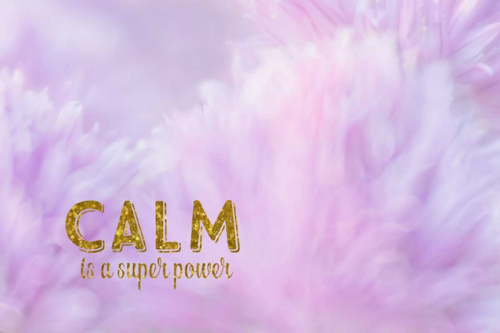Calm is a Superpower Murdock, Ramona 141600