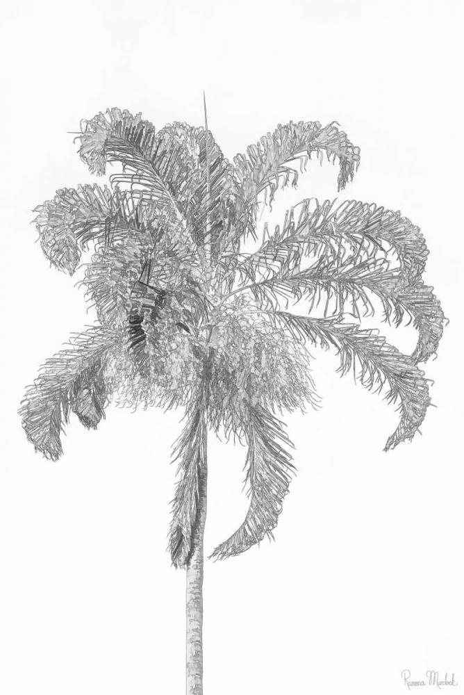 Swaying Palm III Murdock, Ramona 156829