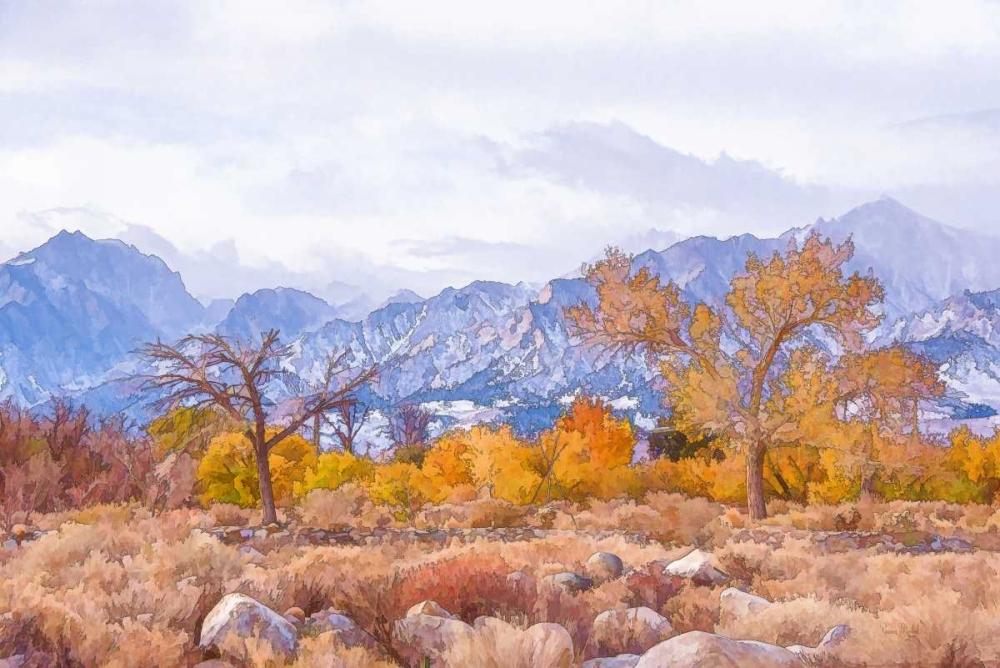 High Desert Vista IV Murdock, Ramona 156868