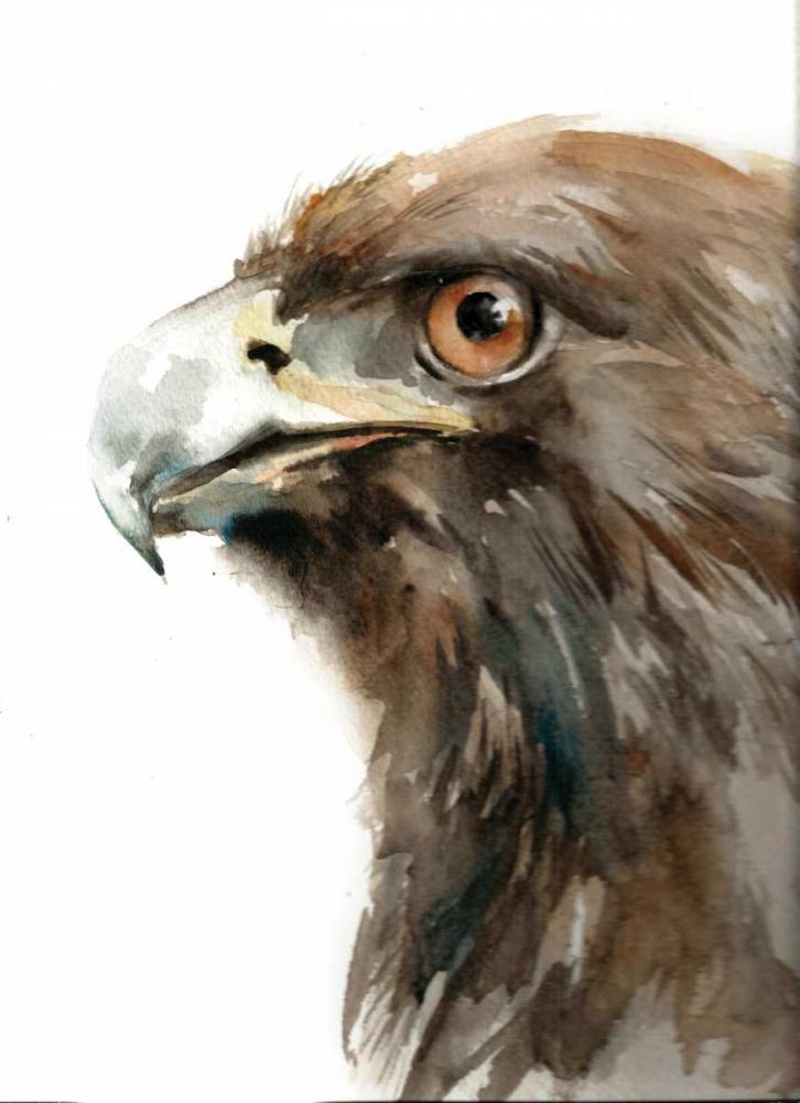 Bird of Prey Rodionov, Sophia 156914