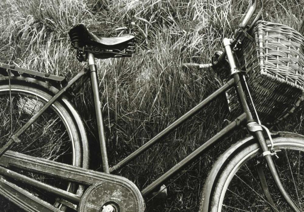 Bike I Roy, Stuart 53433