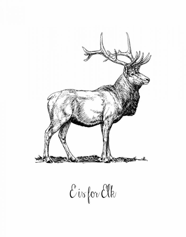 E is for Elk Moss, Tara 83426