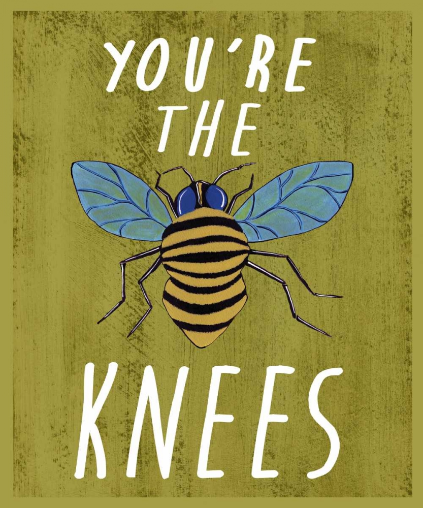 Bees Knees Welsh, Shanni 62340