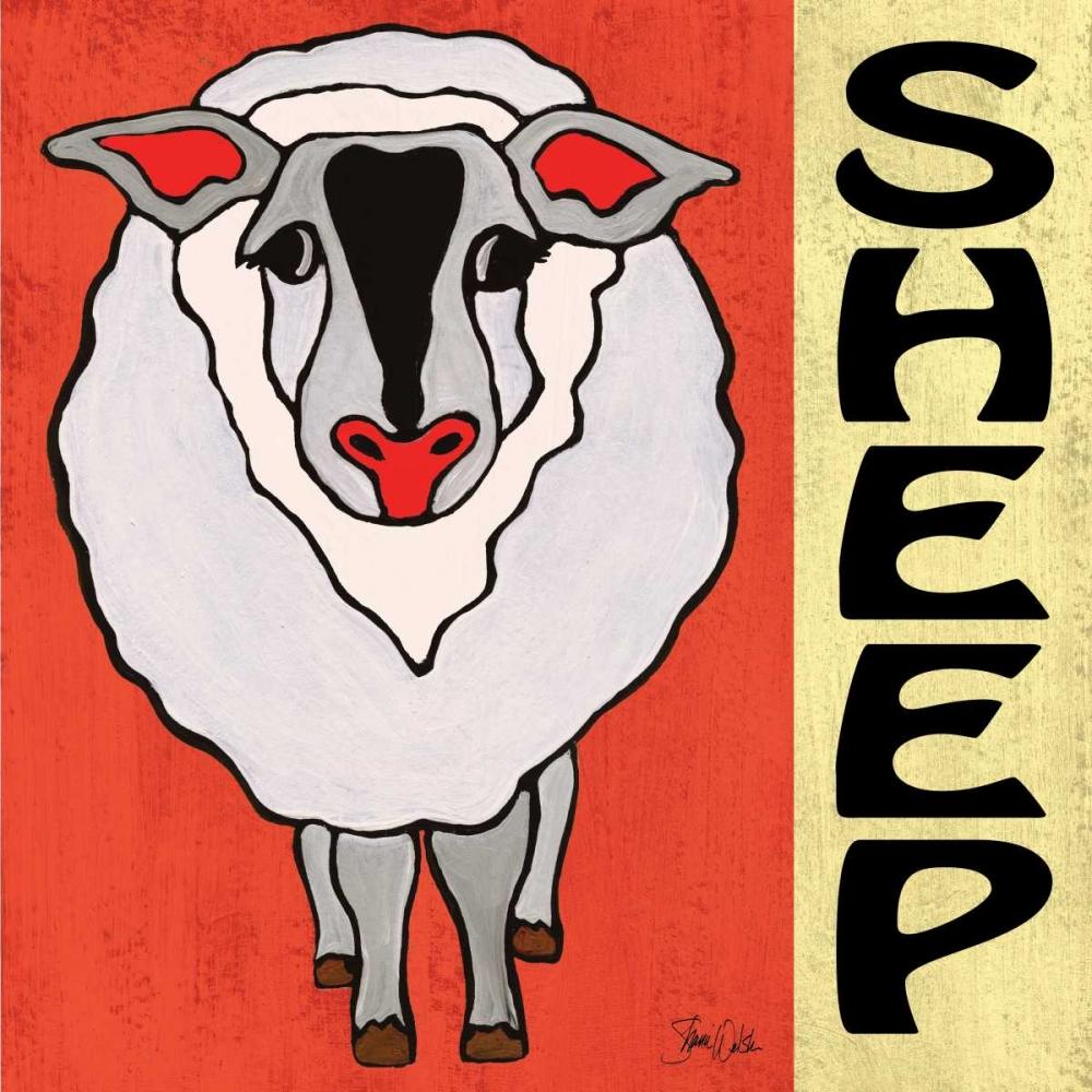 Sheep Welsh, Shanni 77787