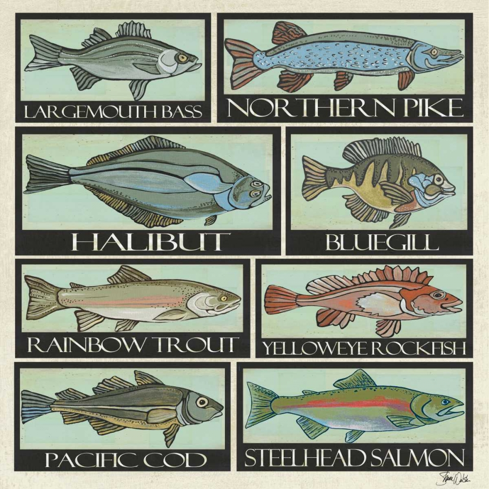 Fish Patchwork Welsh, Shanni 100188
