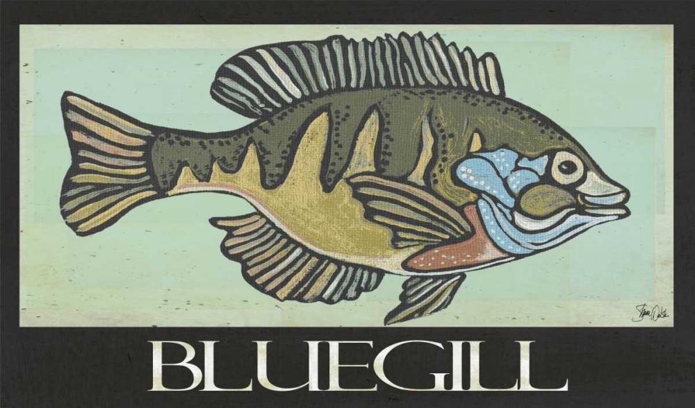 Bluegill Welsh, Shanni 100190