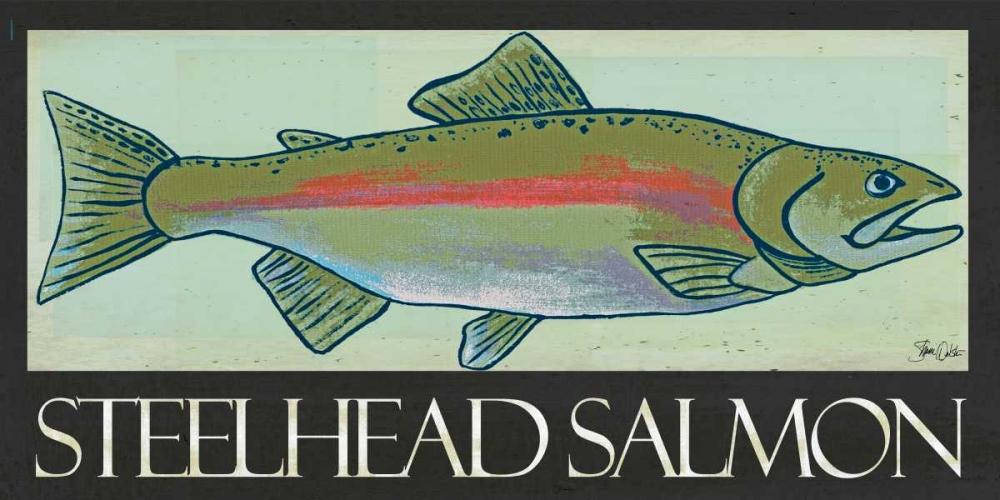 Steelhead Salmon Welsh, Shanni 100196