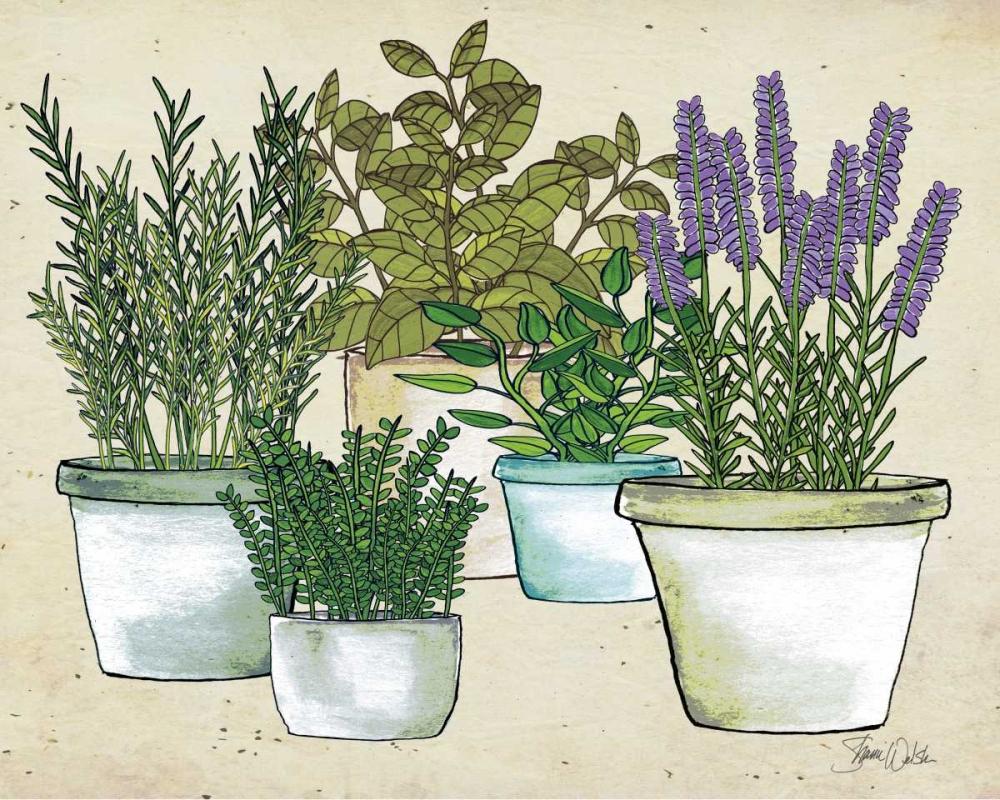Herb Garden Welsh, Shanni 154147