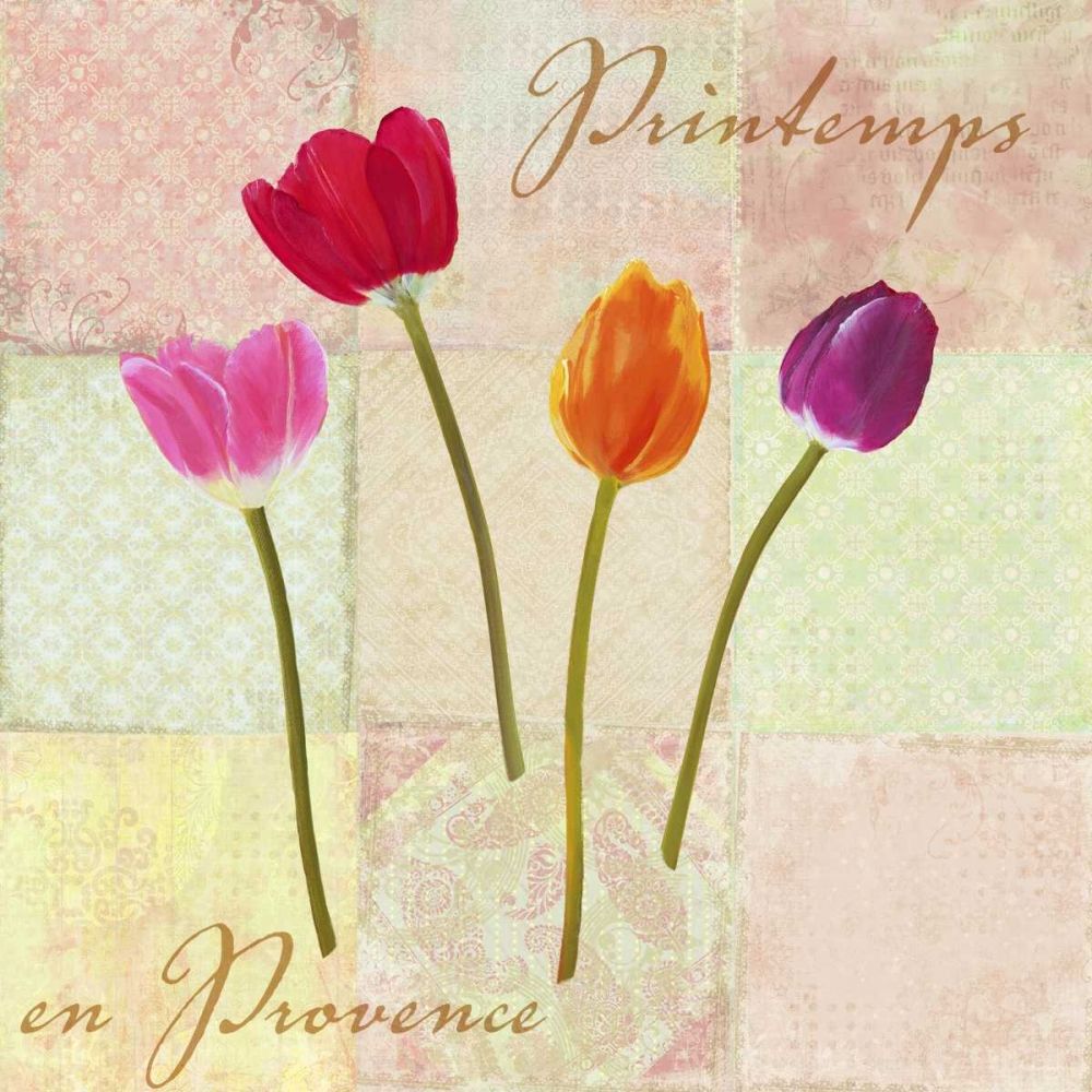 Printemps en Provence Dellal, Remy 42598
