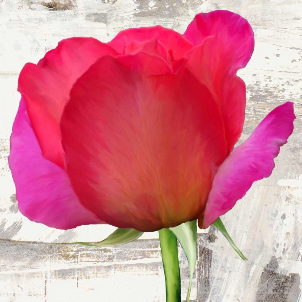 Spring Roses II Thomlinson, Jenny 42731